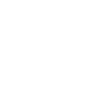 Skyfoxteam Logo